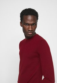 J.LINDEBERG - LYLE CREW NECK - Jumper - chili red - 5