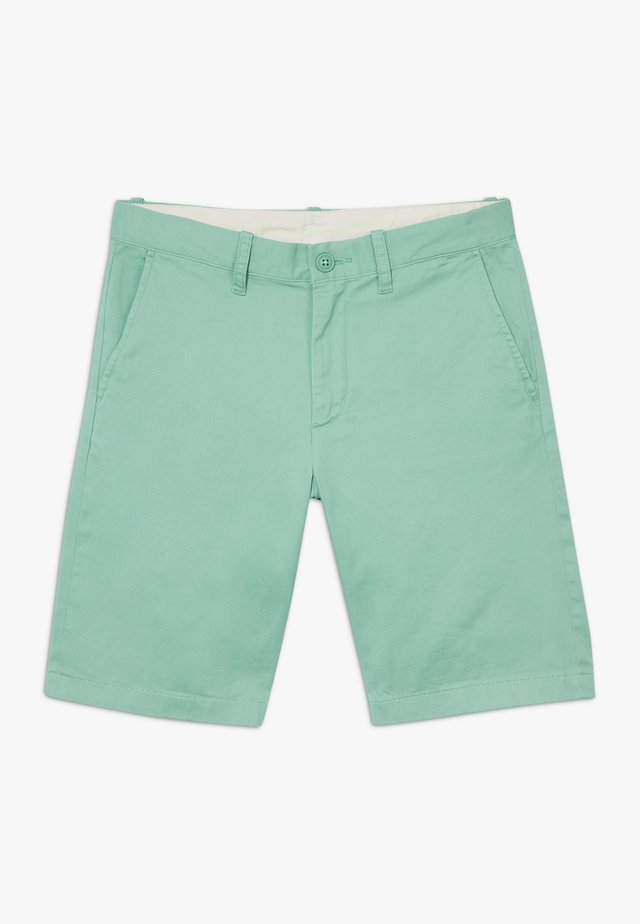 SOLID STANTON - Shorts - frosty seaweed