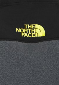 The North Face - STEEP TECH HALF UNISEX - Fleece jumper - vanadis grey/ black/lightning yellow - 2