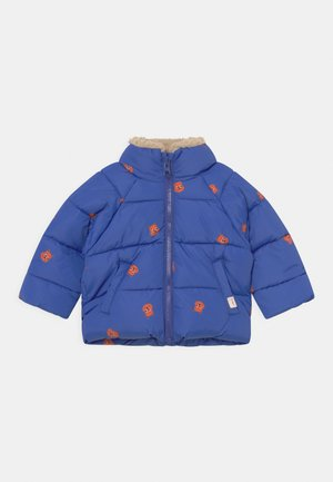 SQUIRRELS PADDED UNISEX - Winter jacket - ultramarine/true brown
