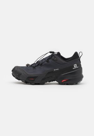 CROSS HIKE GTX - Chaussures de marche - phantom/black/monument