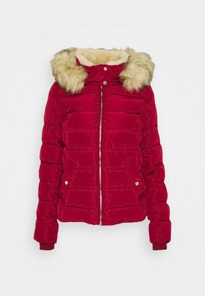 ONLCAMILLA QUILTED JACKET  - Winter jacket - rhubarb