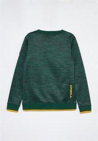 O'Neill - Fleece jumper - panderosa pine - 1