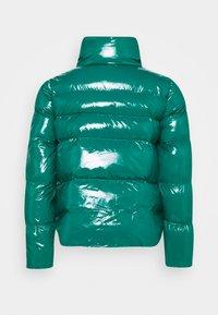 Pinko - MIRCO KABAN - Winter jacket - green - 1