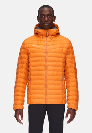ALBULA IN - Winter jacket - dark cheddar