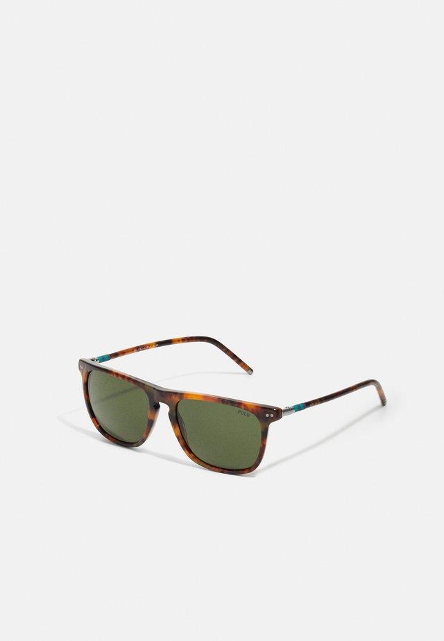 UNISEX - Solglasögon - havana jerry