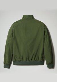Napapijri - AGARD - Bomberjacka - green cypress - 8