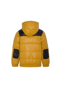 Pepe Jeans - CAS - Winter jacket - colemans gelb - 1