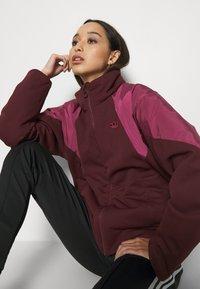 adidas Originals - SHORT PUFFER - Winter jacket - maroon/power berry - 3