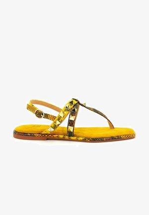 VIRUCA - T-bar sandals - moustard