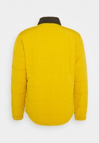 Patagonia - ISTHMUS QUILTED - Veste d'hiver - buckwheat gold - 1
