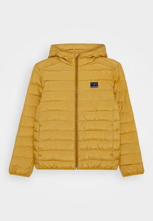 SCALY YOUTH - Chaqueta de invierno - honey