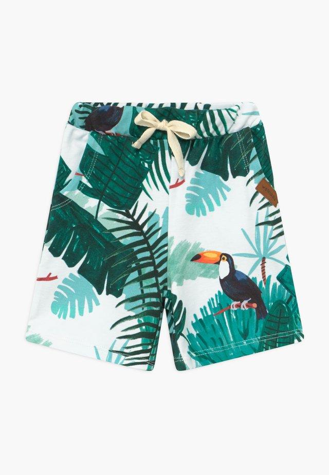 TROPICAL TUCANS - Spodnie treningowe - green