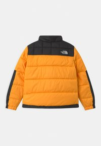 The North Face - LOBUCHE UNISEX - Winterjas - summit gold - 1