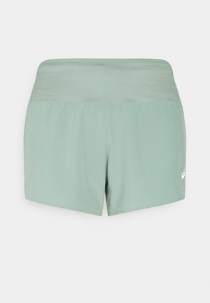 ROAD SHORT - Short de sport - slate grey
