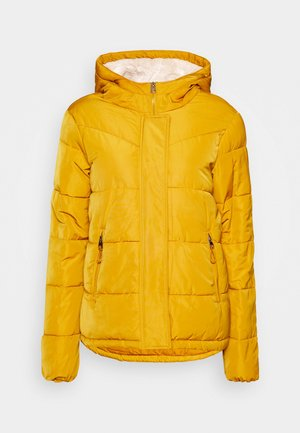 PLUMAS MID WEIGHT - Winter jacket - yellow/pistachio