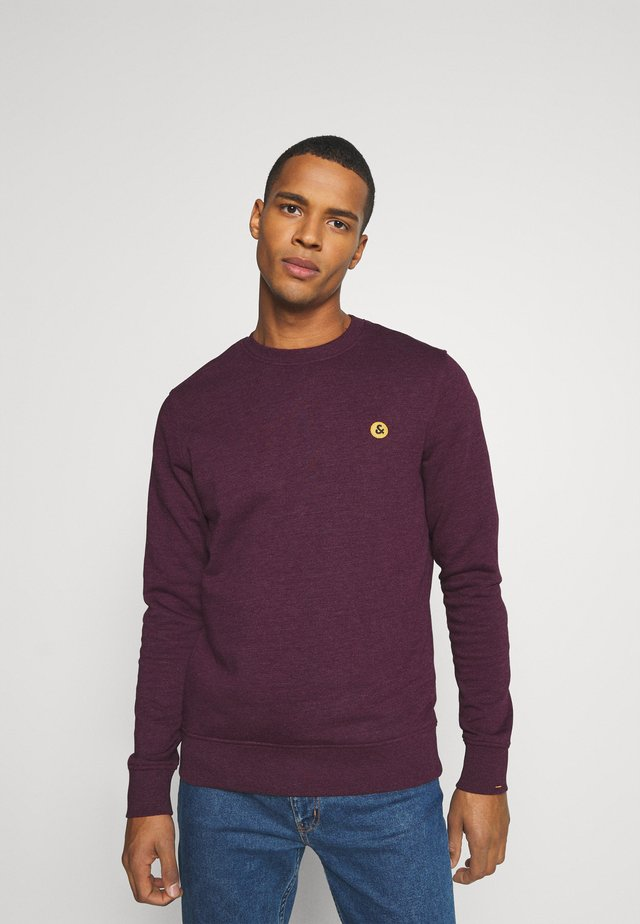 JORVIBE CREW NECK - Sweatshirt - fig
