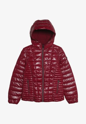 JUNIOR THERMORE HOODED JACKET - Winter jacket - rouge/russian red