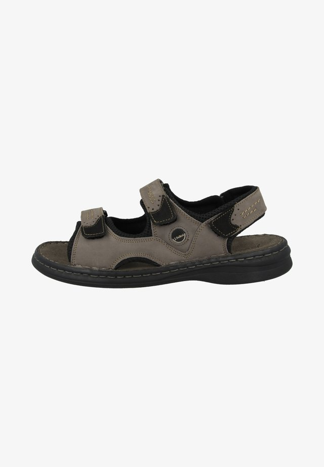 FRANKLIN - Outdoorsandalen - asphalt