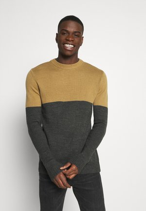 AKRICO - Jumper - beige/dark grey