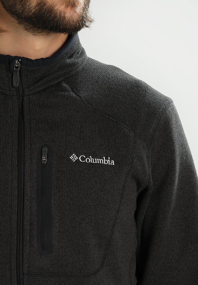 Columbia ALTITUDE ASPECT - Fleecejakke - black heather