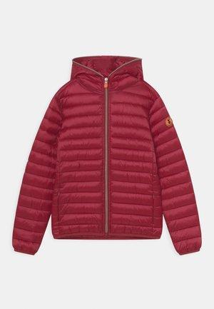 IRIS HOODED UNISEX - Zimní bunda - ruby red
