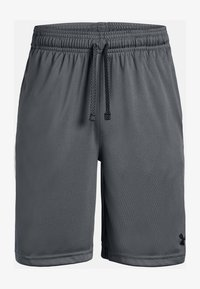 Under Armour - PROTOTYPE WORDMARK - Sports shorts - pitch gray - 3