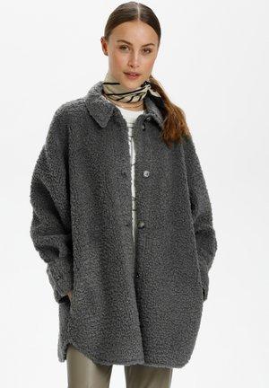 Winter coat - castor gray