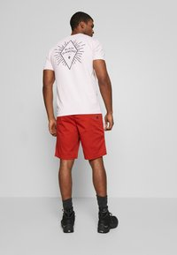 Black Diamond - NOTION - Sports shorts - red rock - 2