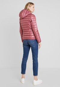 TOM TAILOR DENIM - HOODED PUFFER - Winter jacket - renaissance rose/red - 2
