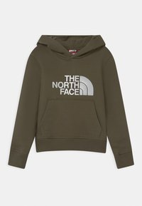 The North Face - DREW PEAK HOODIE - Hoodie - taupe/white - 0