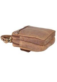 Harold's - Luggage - brown - 3