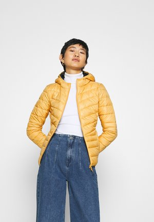 LIGHT PADDED JACKET - Overgangsjakker - indian spice yellow