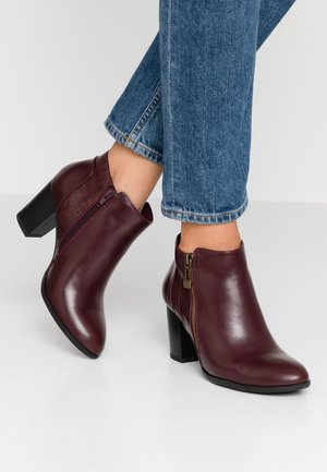 ARCHIVE - Ankle boots - wine