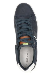 Dolcis - Sneakers laag - blauw - 2
