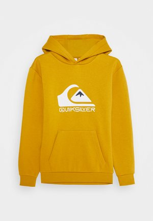 BIG LOGO HOOD YOUTH - Hoodie - honey