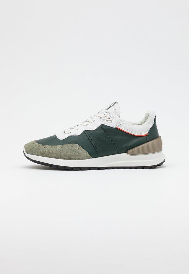 ASTIR  - Sneakers laag - vetiver/sea tangle/bright white/calendula