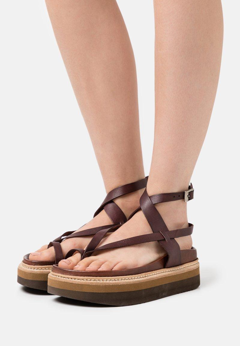 Jeffrey Campbell - ESTRELLA - T-bar sandals - dark brown