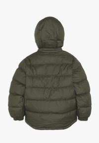 Timberland - STEPP - Winter jacket - kakifonce - 1