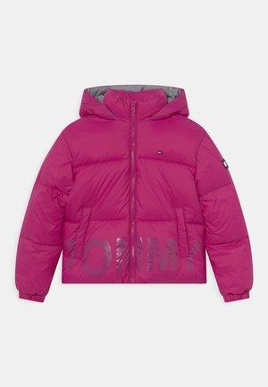 PUFFER LOGO  - Winter jacket - autumn plum