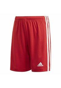 adidas Performance - SQUADRA 21 SHORTS - Pantalón corto de deporte - red - 1