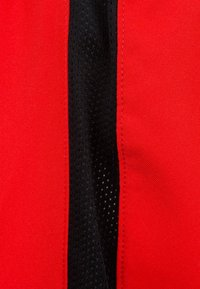 Nike Performance - Sports shorts - red - 2