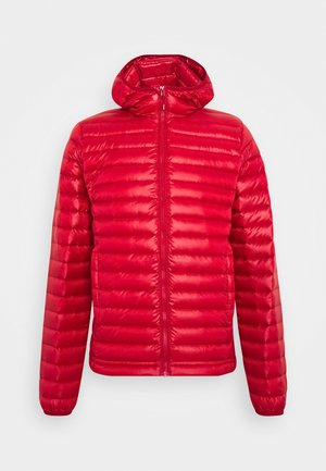 BRUCE HOODED - Down jacket - carmen
