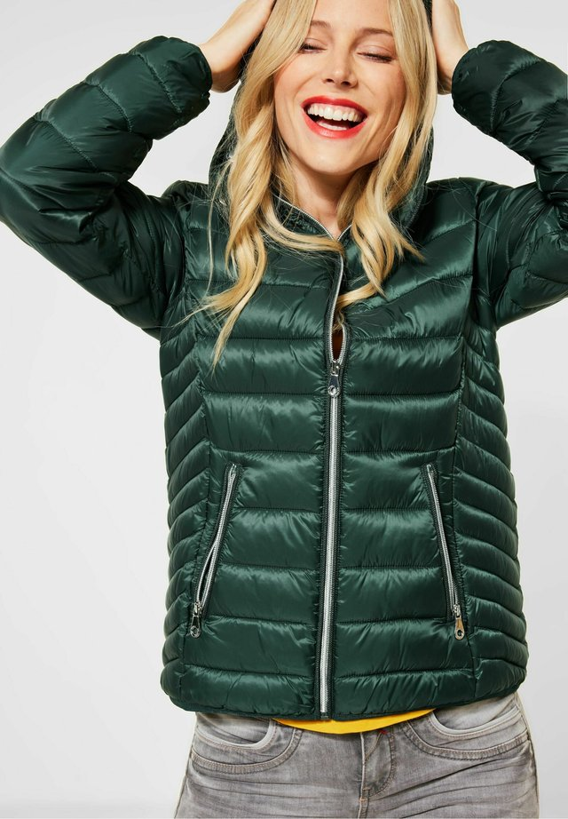 Winter jacket - midnight green