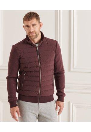 STUDIOS - Winter jacket - deep burgundy