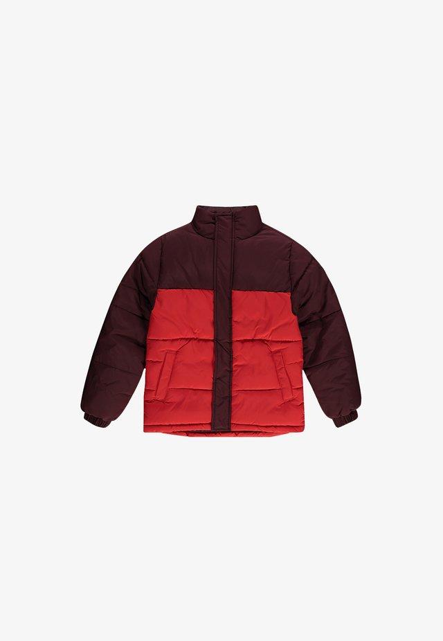 Veste d'hiver - fiery red