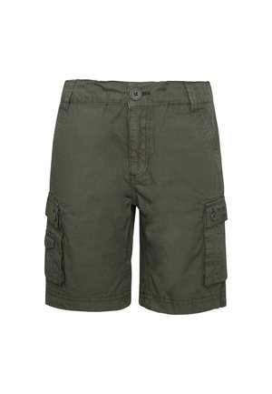 BARRY - Shorts - pond braun