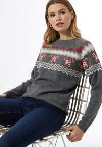 Dorothy Perkins - CHRISTMAS CANDY CANE FAIRISLE  - Jumper - grey