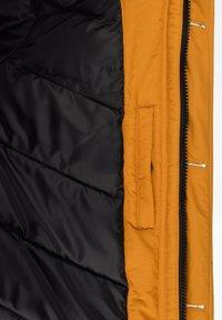 Solid - Winter jacket - sudan brown - 6