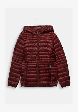 CURVY THINSULATE-FÜLLUNG - Down jacket - bordeaux red